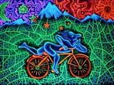 День Велосипеда: как, нет такого?