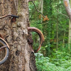 Как правильно хранить велосипед зимой