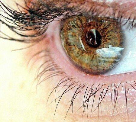 Велосипед это хороший способ борьбы с близорукостью и дальнозоркостью, а так же катарактой