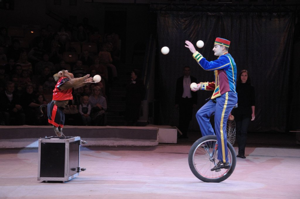 Цирковые велосипеды – правдивая история о наших детских впечатлениях