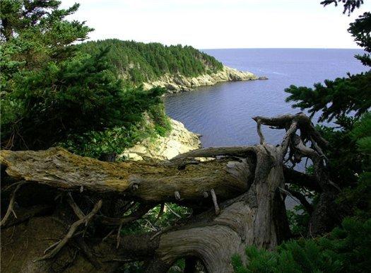 Канадский остров Кейп-Бритон