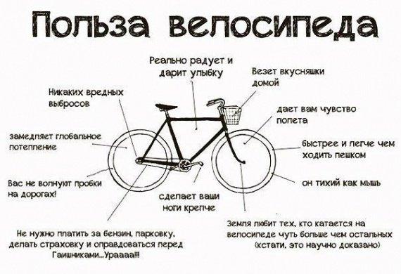 10 дополнительных бонусов велосипеда